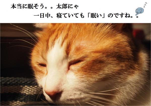 縺ュ繧?_convert_20120518221320