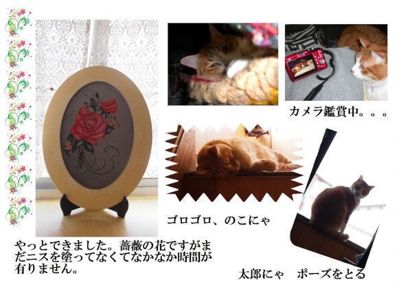 縺ー繧雲convert_20120519222536