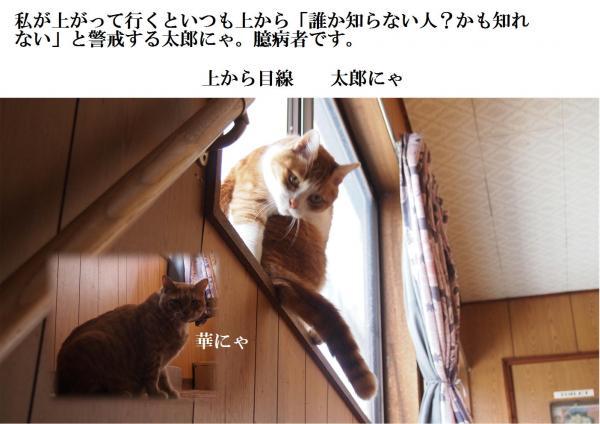 縺翫¥_convert_20120524210059
