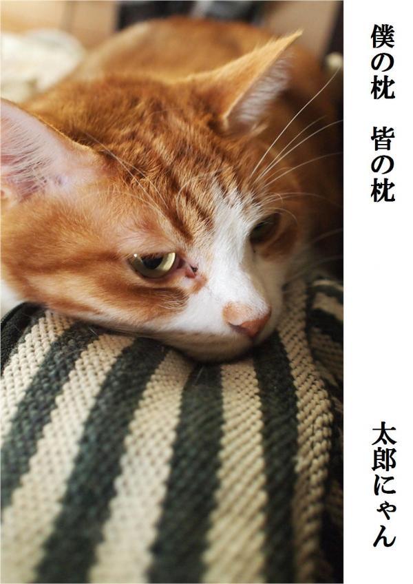 縺セ縺上i_convert_20120526220035