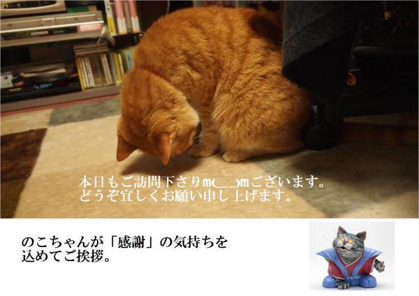 縺ゅ>縺輔▽_convert_20120529225953