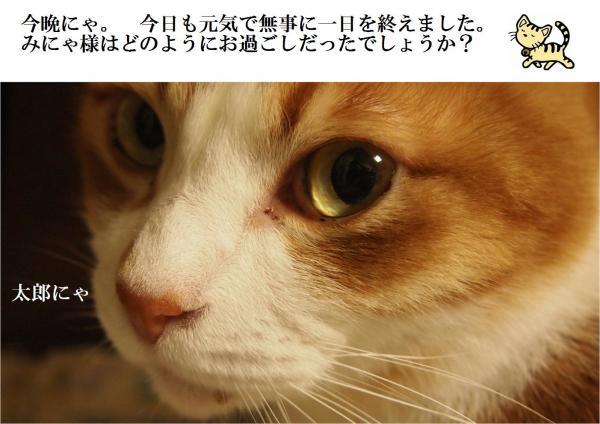 縺ォ繧ダconvert_20120530222636