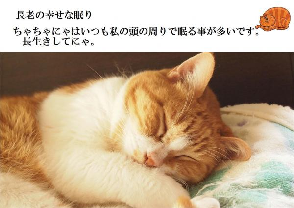 縺ュ_convert_20120603192742
