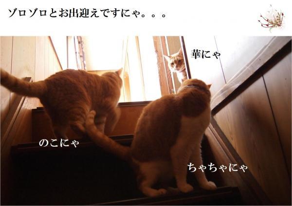 縺昴m_convert_20120604221112