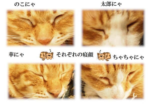 縺ュ_convert_20120605220108