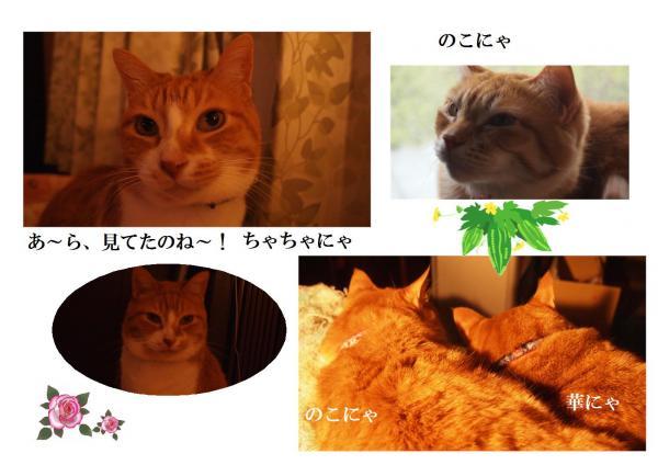 縺ゅi_convert_20120610203654