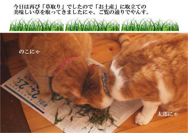 縺上&_convert_20120610203715