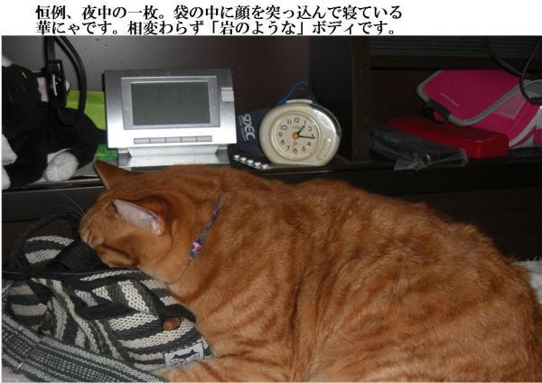 縺・o_convert_20120614220445