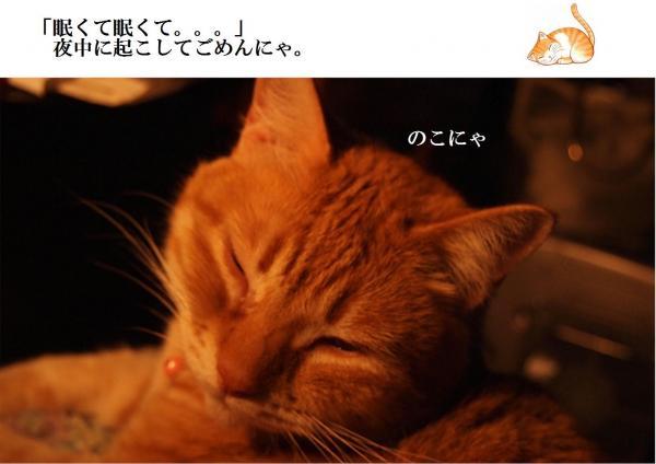 縺ュ繧?_convert_20120615221127