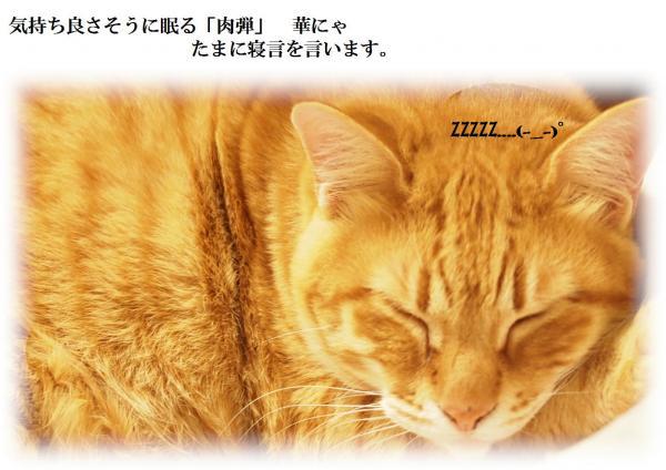 縺ュ_convert_20120616223333