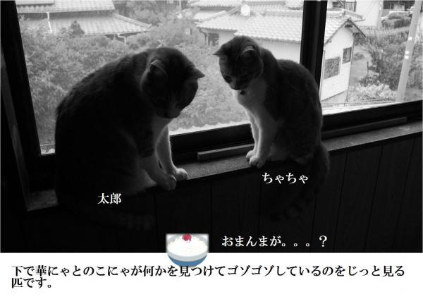 繧エ繧セ_convert_20120617204636