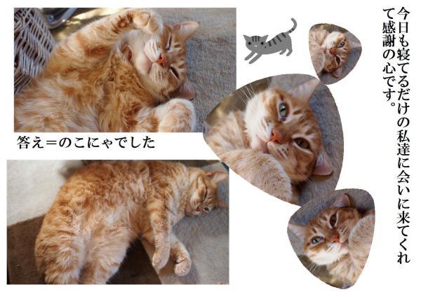 繧ッ繧、繧コ_convert_20120620231707