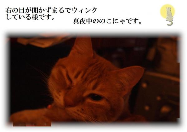 繧ヲ繧」繝ウ繧ッ_convert_20120621221017