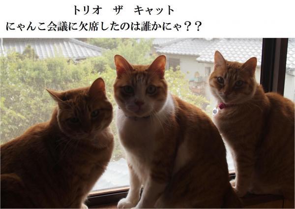 莨夊ュー_convert_20120622213908
