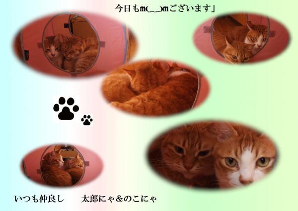 莉イ_convert_20120625222339