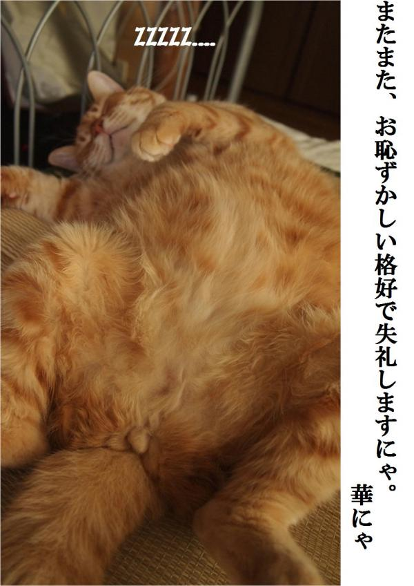 縺ッ縺壹°縺誉convert_20120627212740