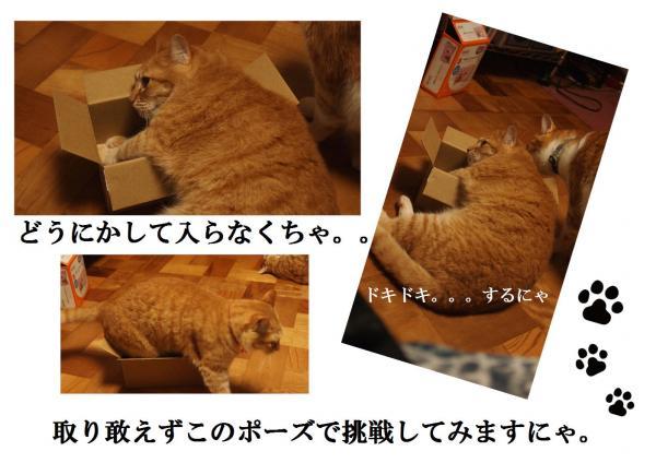 蜈・繧祇convert_20120628222653