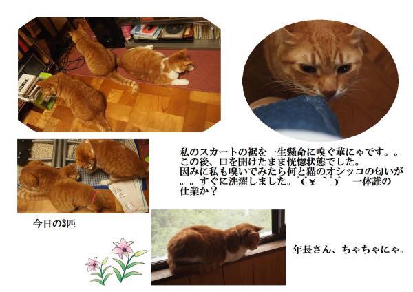 蛹ゅ>_convert_20120630211533