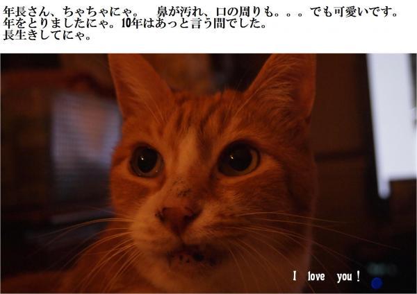 縺ュ繧薙■繧・≧_convert_20120701212856