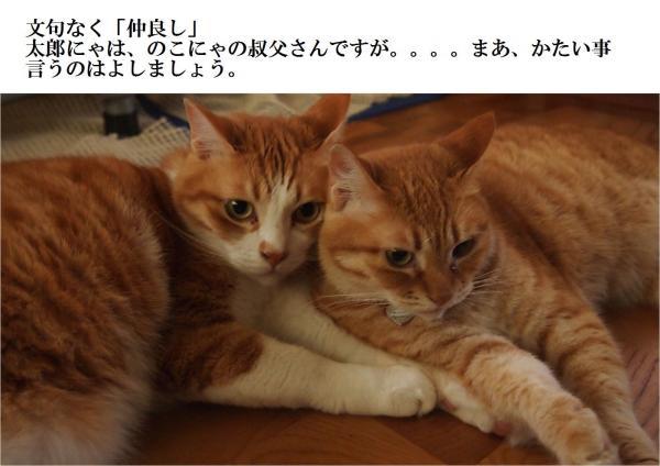 莉イ濶ッ縺誉convert_20120705224515