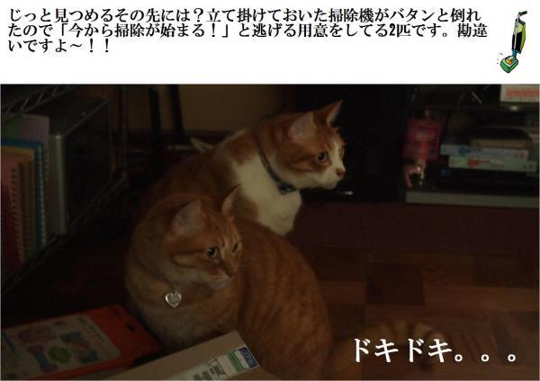 蜍倬&縺Юconvert_20120709221055