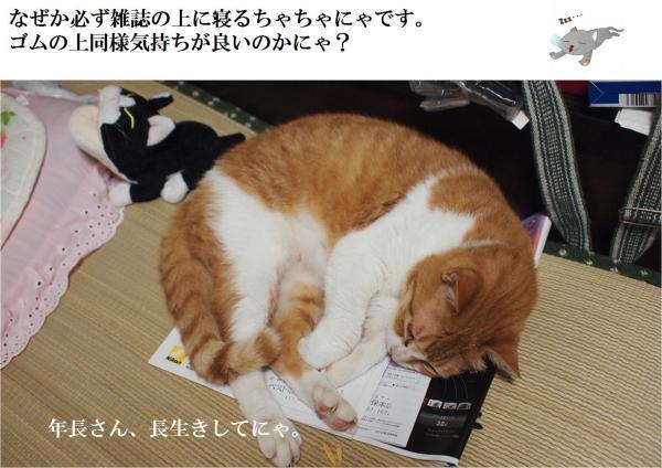 蟇昴k_convert_20120712224819