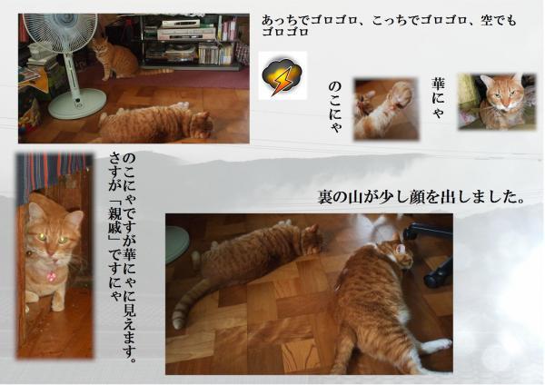 繧エ繝ュ繧エ繝ュ_convert_20120714220914