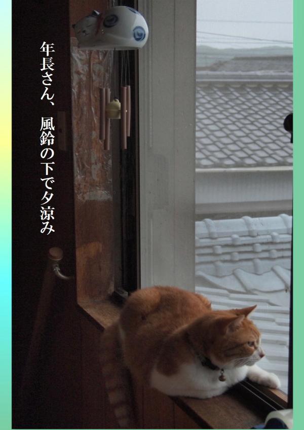豸シ縺ソ_convert_20120719224843