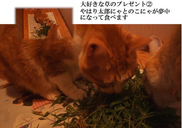 縺上&_convert_20120724232846