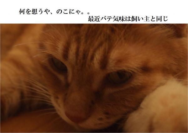 繝舌ユ_convert_20120725214050