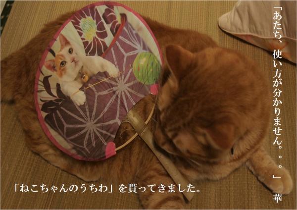 縺・■繧柔convert_20120727221342