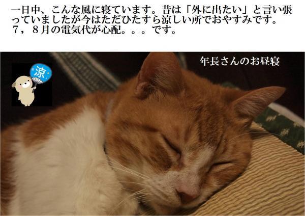 蟇昴k_convert_20120728225441