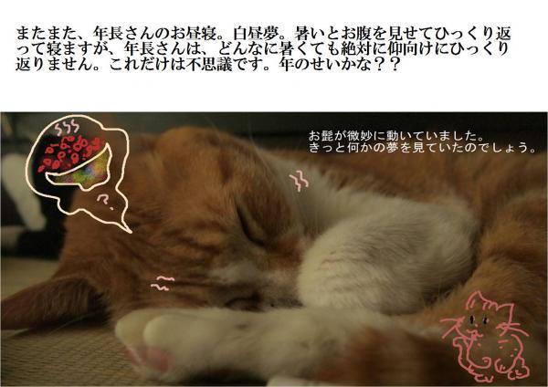 蟷エ_convert_20120729225839
