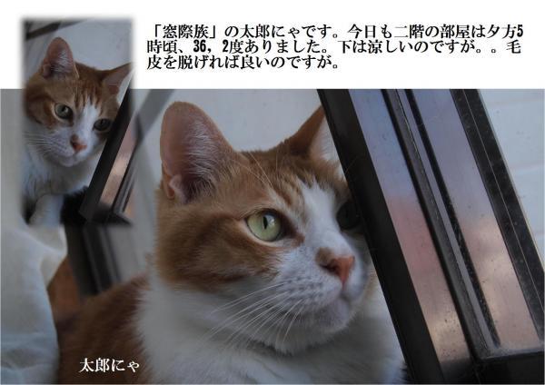 閼ア縺神convert_20120729225820