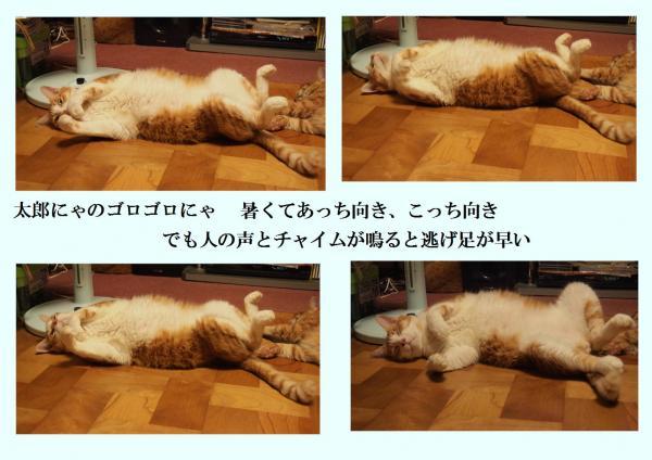 繧エ繝ュ_convert_20120808225707