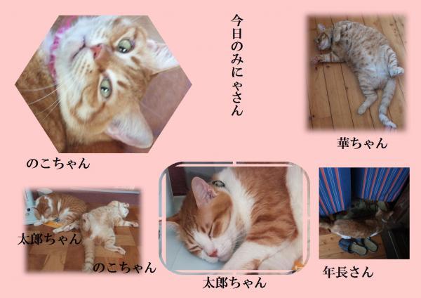 縺ソ縺ォ繧・&繧点convert_20120901225353