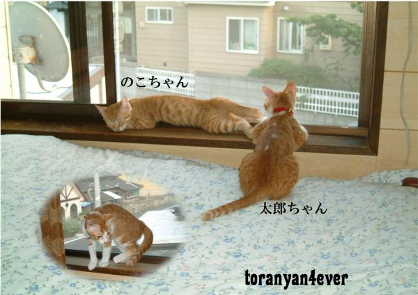 縺ィ縺エ_convert_20120923194211