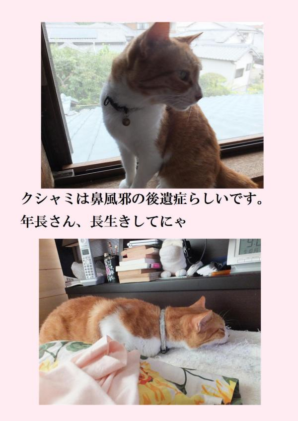 縺ュ繧・_convert_20120923194326
