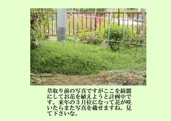 闕雲convert_20120923200919