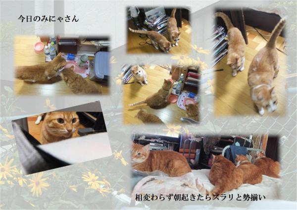 縺ソ縺ェ_convert_20120924210547