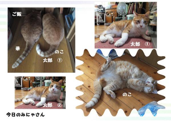 縺ソ縺ォ繧ダconvert_20121023231449
