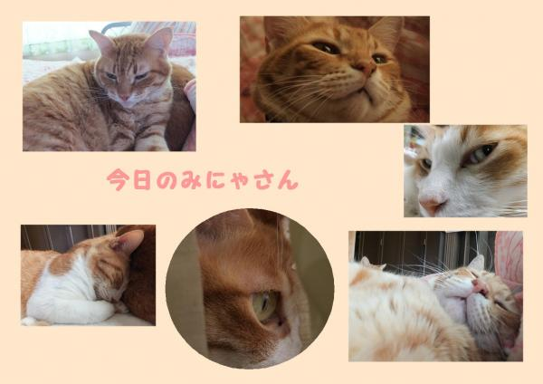 縺ソ_convert_20121025222627