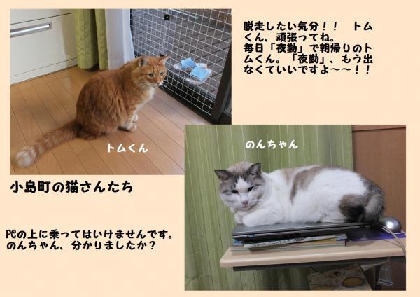縺薙§縺セ_convert_20121029224636