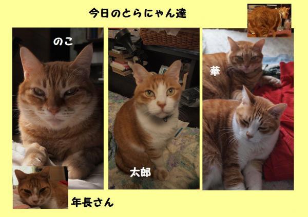 縺阪g縺・convert_20121105213630