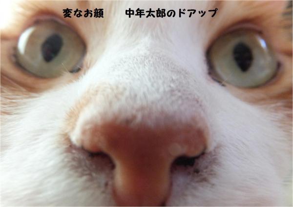 繝峨い繝・・_convert_20121105213721