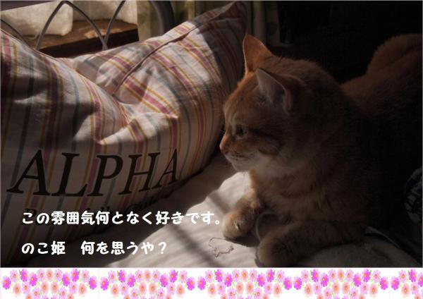 縺イ繧\convert_20121109221024