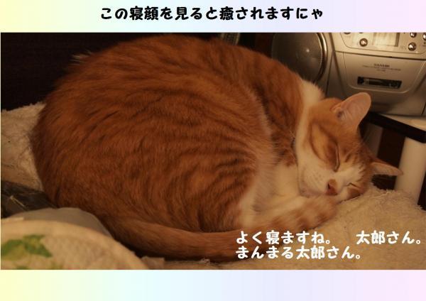 縺・d縺輔l_convert_20121110213235