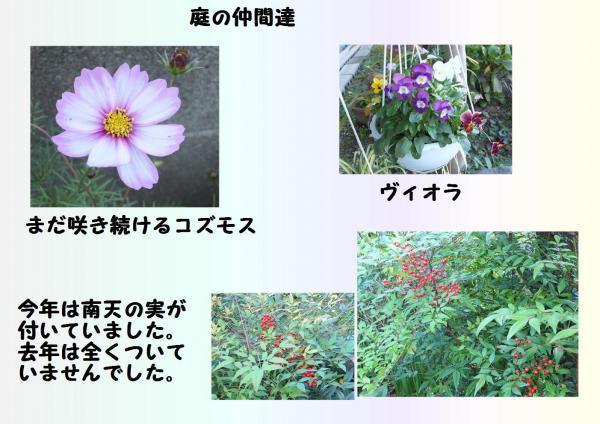 闖ッ_convert_20121118203651