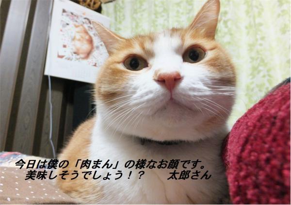 閧雲convert_20130114223850