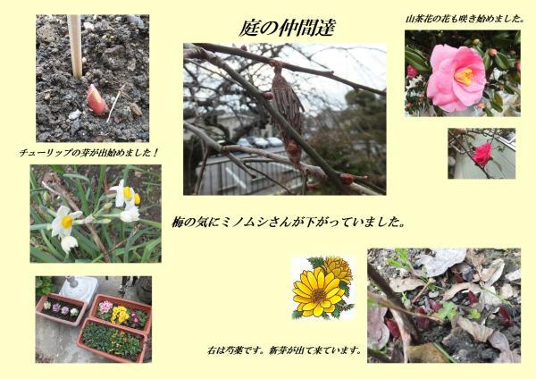 蠎ュ_convert_20130118230431